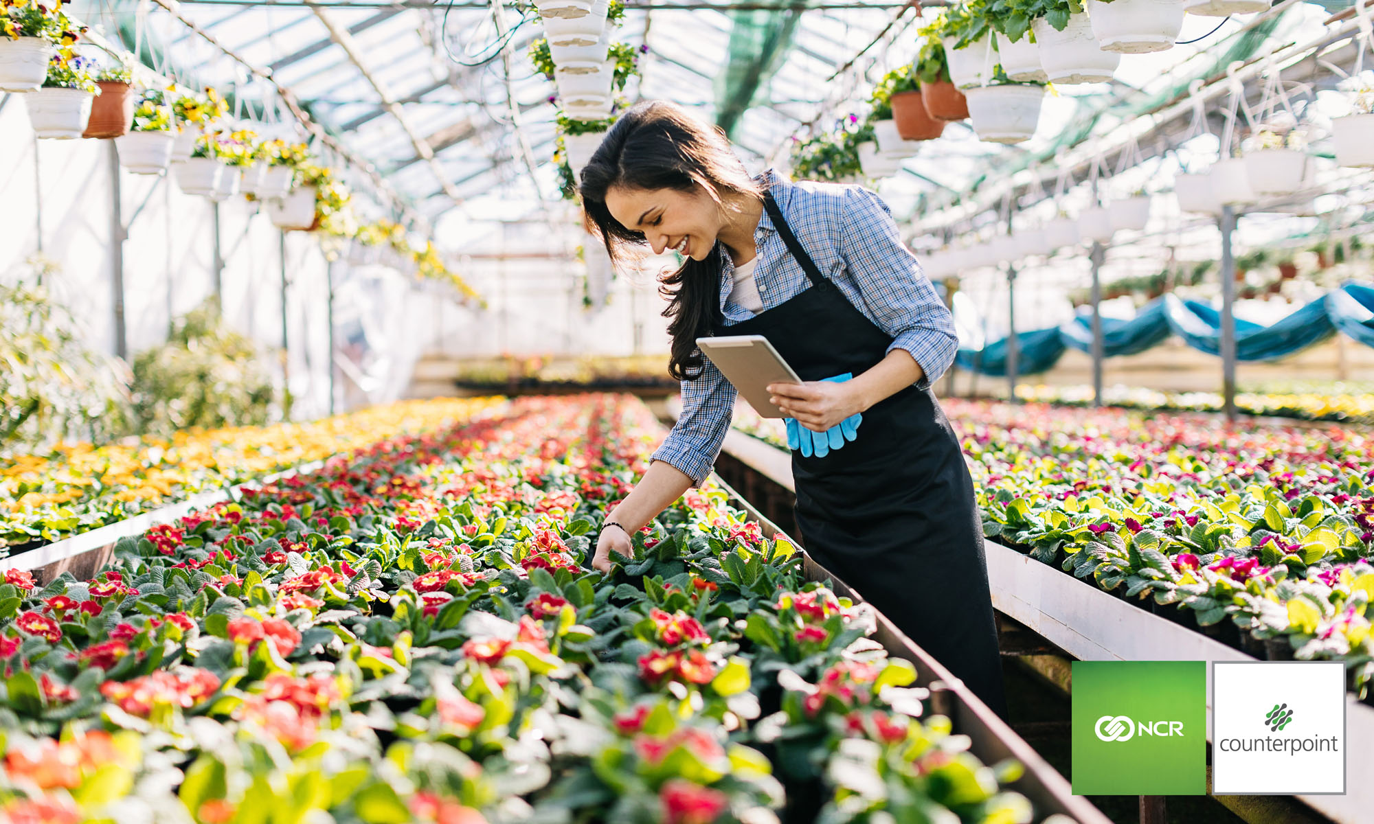 Lawn And Garden Retailers Nationwide Depend On Ncr Counterpoint As Their Pos System To Manage Diverse Lists Of Vendors Monitor A Constantly Changing